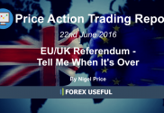 Price Action Trading Report EUUK Referendum